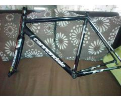 Cannondale Caad8 Frameset