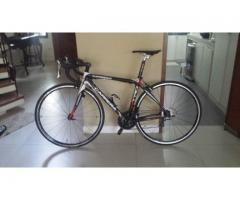Carrera Carbon Road Bike