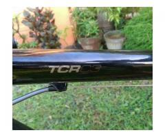Giant TCR full Carbon composite