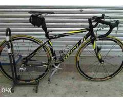Giant TCR Road bike