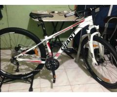 29er Giant Aluxx 6000 series
