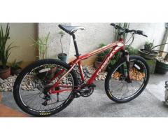 Mountain Bike Phoenix 26er Bnew Medium