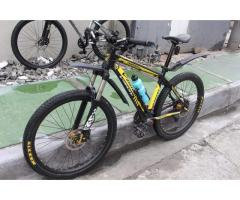 VisionPursuit 26er or swap to 29er