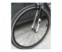 Shimano WH RS81