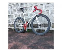 Upgraded Celt Fixie