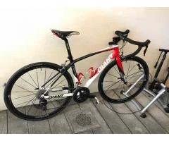 Giant Defy Alliance 0 Endurance Climbing Bike